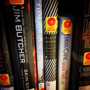 Books by traditional and indie authors on the same library shelf