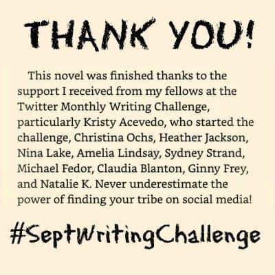 Stormseer Acknowledgements to Twitter Writing Challenge friends