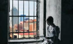 A Spirit of Camaraderie cover: A woman in Victorian clothes sit in a window reading. Outside the window is the skyline of modern Indianapolis.